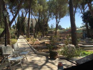 Kirkegården set fra  hvor vi spiste frokost